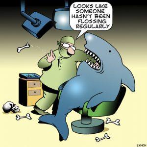 flossing_shark